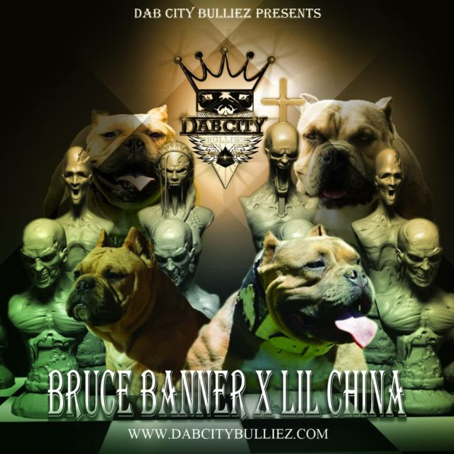 Puppies for Sale ⋆ DAB CITY BULLIEZ - An Exotic Bully Breeder